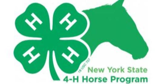 NYS 4H Horse Program