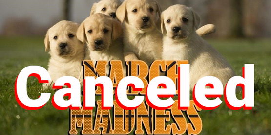 March_Dog_Madness Canceled