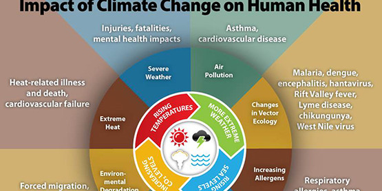 Impact of Climate Change on Human Health from the Centers for Disease Control and Prevention