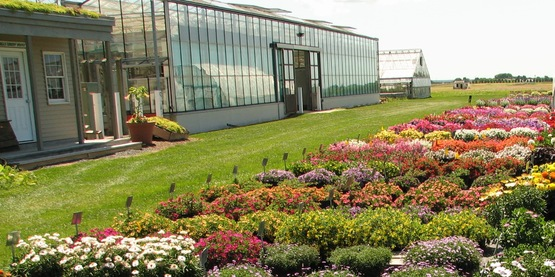 Trial garden at the Long Island Horticultural Research and Extension Center.