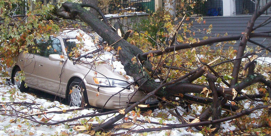 "A car is crushed by a tree limb on Potomac off Elmwood Avenue in Buffalo, New York during the ""Friday the 13"" snow storm. October 14, 2006."