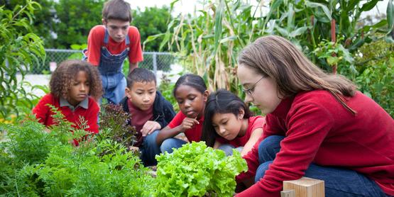Kids learning in garden