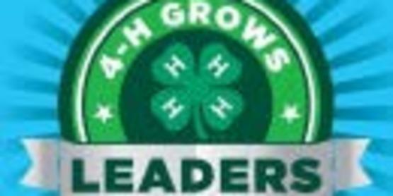 4-H Leaders
