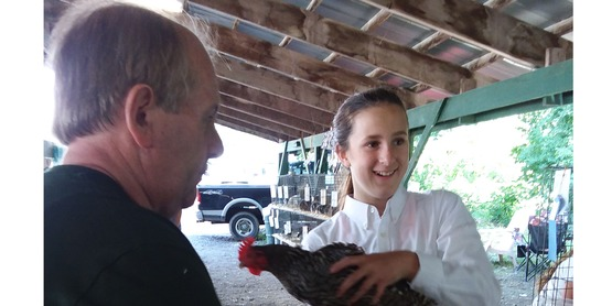 2017 Poultry Show