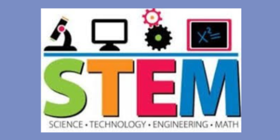 NYS STEM CAMP