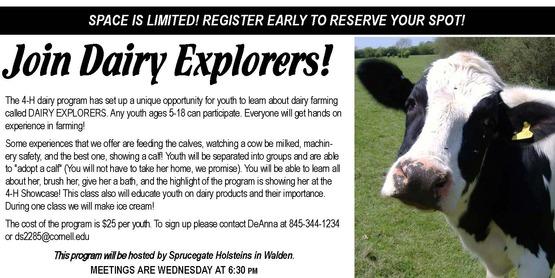 dairy explorers