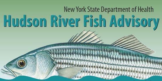 Fish advisory DOH banner