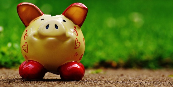 a ceramic piggy bank against a blurred grassy background