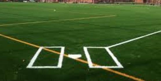 synthetic field