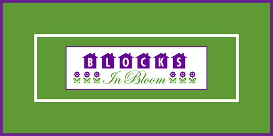 Blocks in Bloom banner