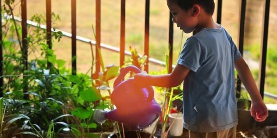 Youth watering plants in garden