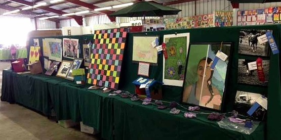 200 4-H exhibits and booth displays at the 2016 Boonville Oneida County Fair