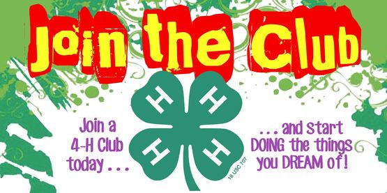 4-H recruitment join the club