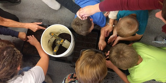 planting seeds with kids