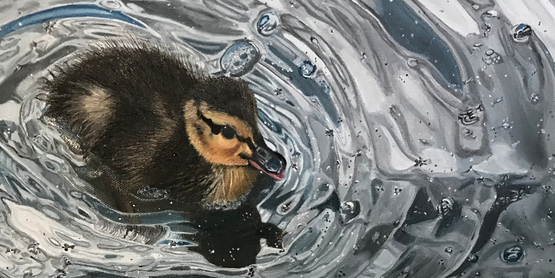 Duck on a pond. Oil on Canvas