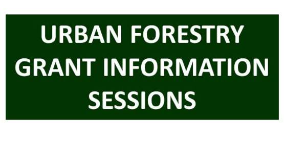 urban forestry grant info sessions