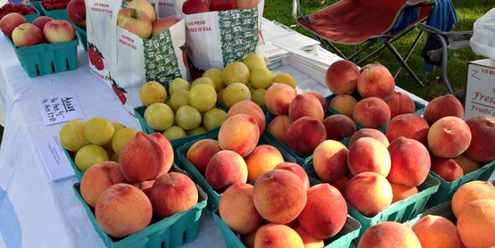 peaches for sale on a table at Grisamore Farms, from their Facebook page