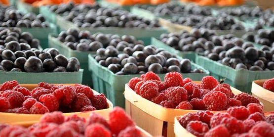 Farmers Market fresh raspberries and blueberries.