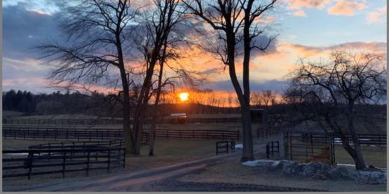 Mill Creek Farm