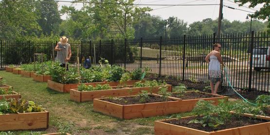 community garden, CHP