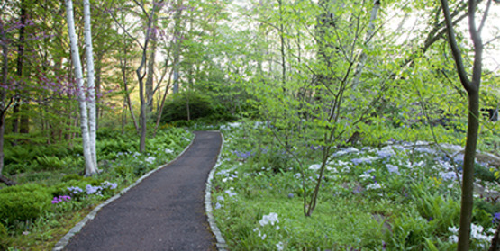 a winding path through Chanticleer Garden