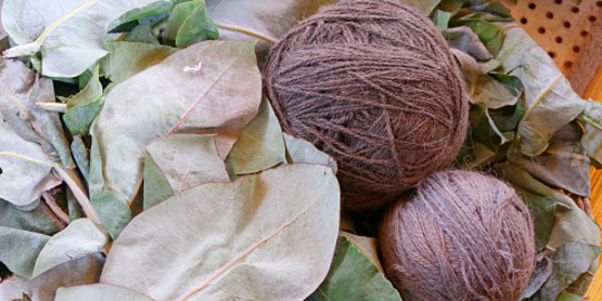 yarn dyed with plants