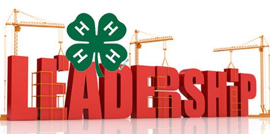 4-H Leadership skills
