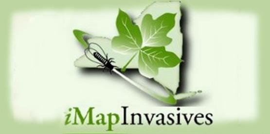 Logo for iMap Invasives