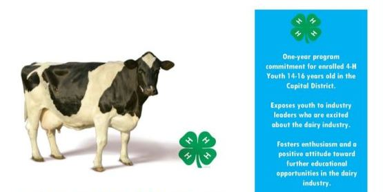 4-H Dairy Visions Poster
