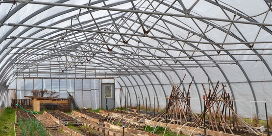 The Farm; hoop house / greenhouse