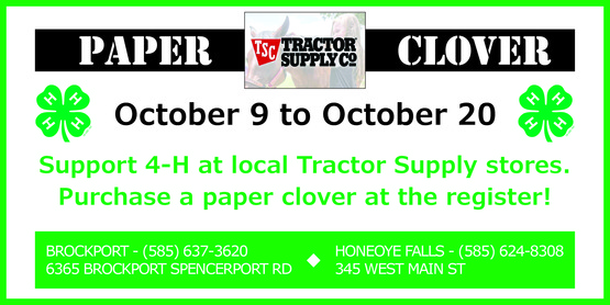 2019 Fall Paper Clover Campaign banner