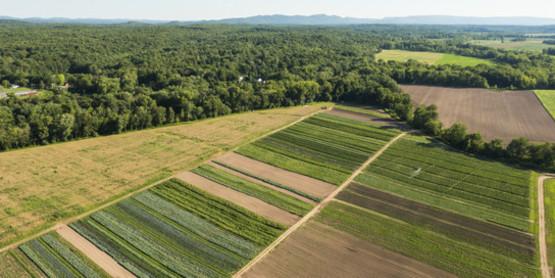 Land Owner Farm