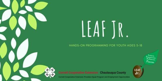 The Learn, Empower, Achieve, Farm (LEAF) Junior workshops teach youth ages 5-18 life skills while having fun!