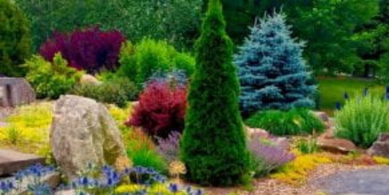 """Check out our new blog """"Gardening In Orange County New York"""""""