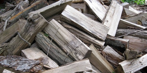 Learn about buying, storing and safely burning firewood in our section on Heating with Wood.