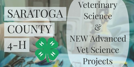 Saratoga County 4-H Veterinary Science and New Advanced Vet Science Projects