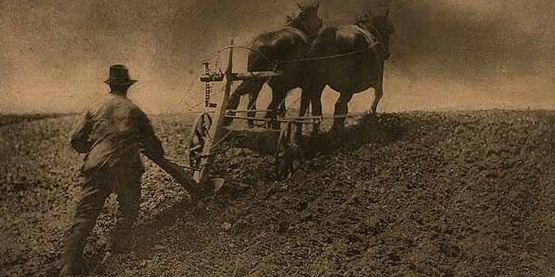 "'A Stiff Pull"", 1886-1887, photogravure by Peter Henry Emerson (1856 - 1936 );