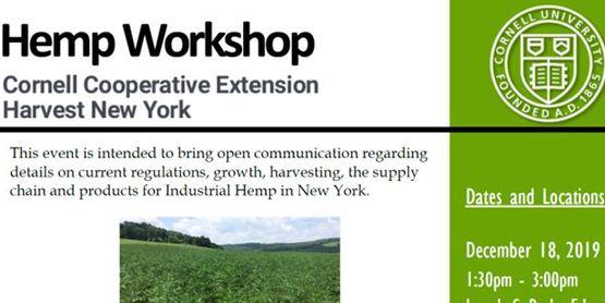 Hemp workshop