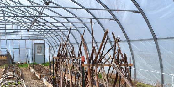 The Farm; inside a hoop house with raised beds and low tunnels