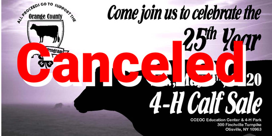 Calf Sale Post Card 2020.FInal_Page_1 Canceled