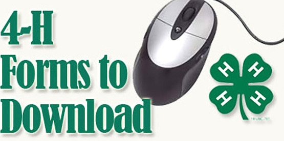 a computer mouse and text saying 4-H Forms to Download