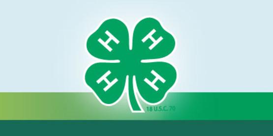 4-H Emblem Rainbow