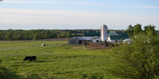 The Farm; St. Lawrence County