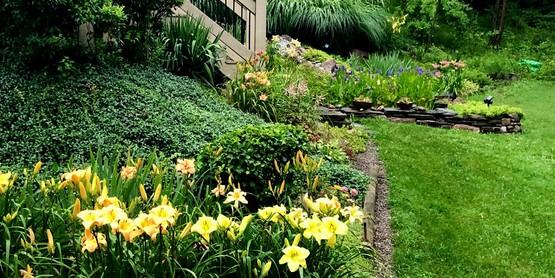Hillside at Lyman Garden.