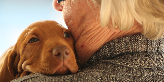 Aging woman holding a dog.