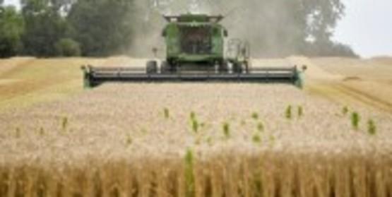 Soybean Congress