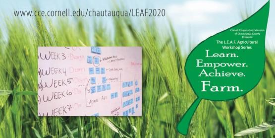 2020 LEAF Business Banner
