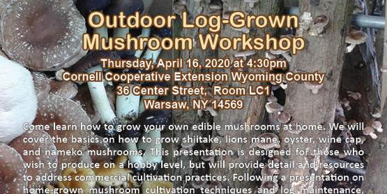 Outdoor Log-Grown Mushroom Workshop 2020