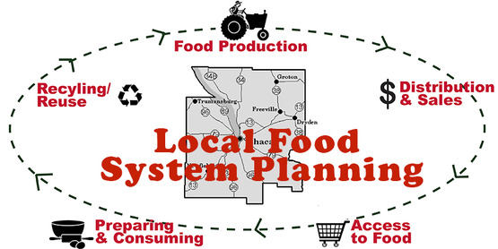 schematic showing the food cycle