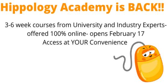 Hippology Academy